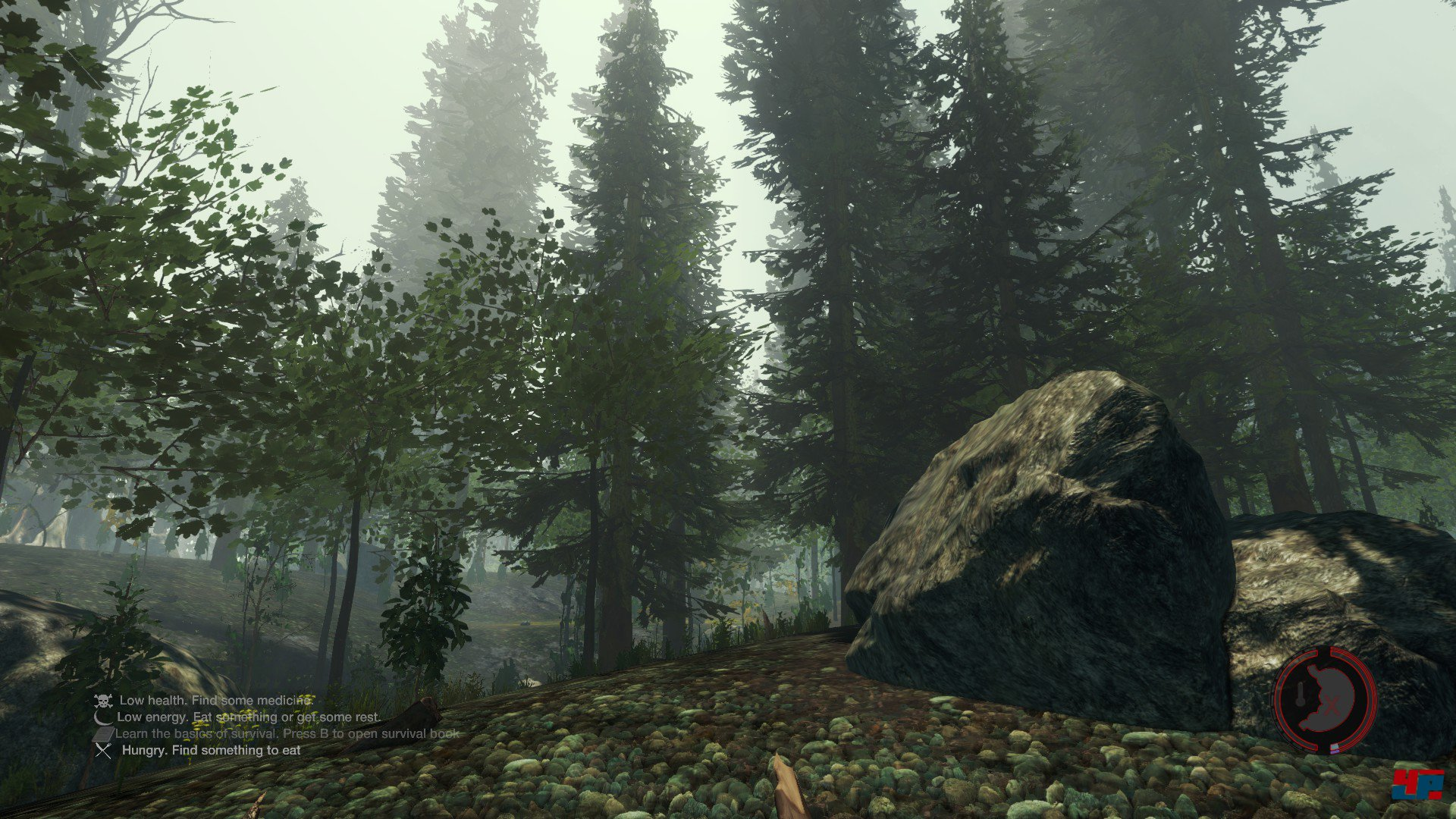 the forest download link
